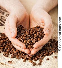 コーヒー豆, 保有物, 人