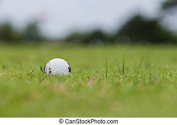 ゴルフボール, 上に, フェアウェー