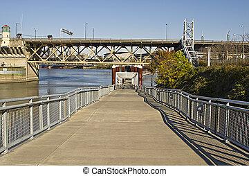 サイクリスト, 歩行者, 川, willamette, 道