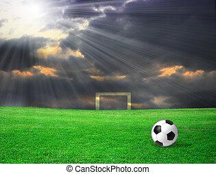 サッカーボール, 上に, 草