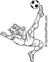 サッカー, マスコット, スポーツ, プレーヤー, 動物, フットボール, tiger