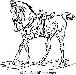 サドルを置かれる, 馬