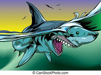 サメ, すてきである