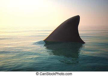 サメ, 海洋, ひれ, の上, water.