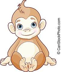サル, 赤ん坊
