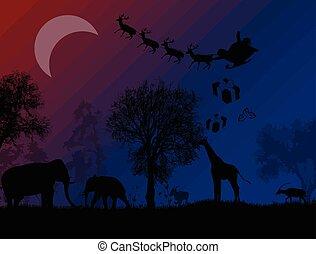 サンタクロース, 中に, アフリカ