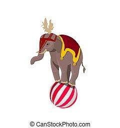 サーカス, ボール, バランスをとる, 象