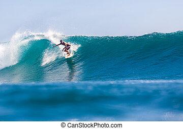 サーフィン, 波
