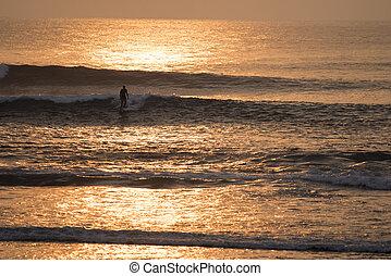 サーフィン, 海洋水, 日没, 時間, 人