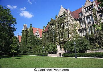 シカゴの大学, ∥で∥, ivy-clad, ホール