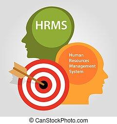 システム, 管理, 人的資源, hrms