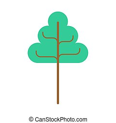 シナノキ, isolated., 大きい木, 木, 緑の背景, 白