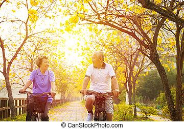 シニア, 幸せな カップル, 自転車の 乗車, 公園