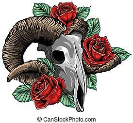 シャクヤク, ばら, goat, illustration., 花, 魔法, すごく, シンボル, 頭骨, ベクトル