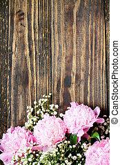 シャクヤク, 呼吸, ピンクの背景, babys, 花, 上に, 無作法, 木, 自然