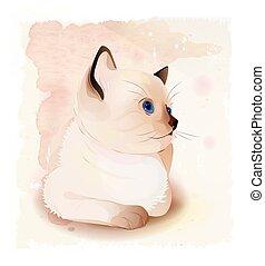 シャム, cat., 伝統的である, 子ネコ, 肖像画, タイ人