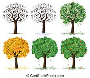 シルエット, の, 季節的, 木