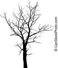 シルエット, の, 枯れた木, なしで, 葉