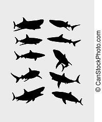 シルエット, サメ