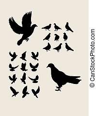 シルエット, セット, 鳩