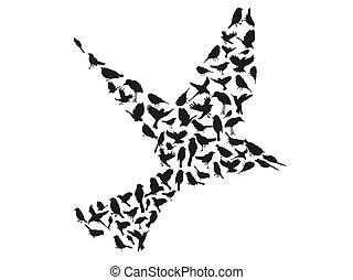 シルエット, ベクトル, グループ, 鳥