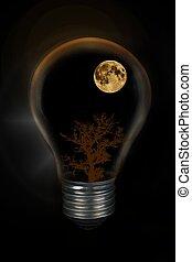 シルエット, ライト, 木, 月, バックグラウンド。, 黒, 前部, 電球, 照ること