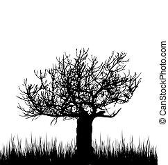 シルエット, 木, 隔離された, 背景, 白, 草