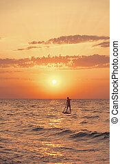 シルエット, 板, 海, 一口, sunset., 人