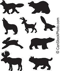 シルエット, 森林, 動物