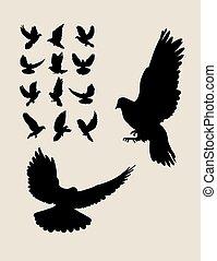 シルエット, 飛行, 鳩