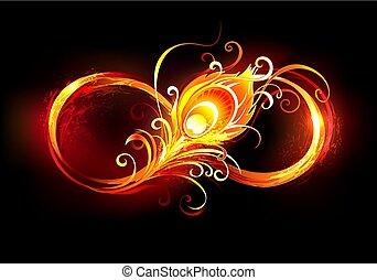 シンボル, 羽, 無限点, fiery, 孔雀