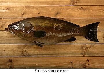 シーフード, grouper, 上に, 木, 釣りキャッチ, fish