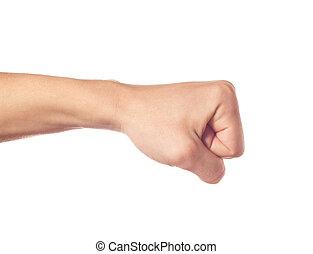 ジェスチャーで表現する, 手