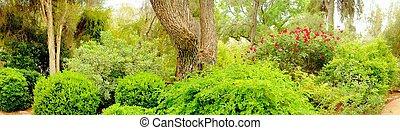 ジャングル, 庭