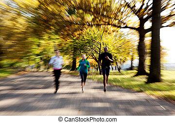 ジョッギング, 公園