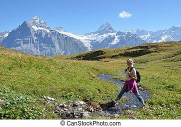 スイス人, 移住, アルプス