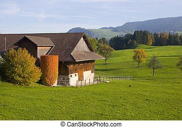 スイス人, 農場, vi