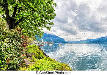 スイス, 湖, 花, montreux., 木