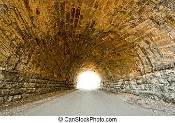 スウェーデン蕪, トンネル, くぼみ