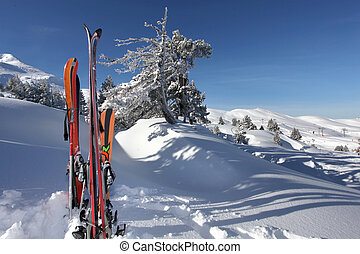 スキーをする, 雪