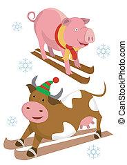 スキーヤー, 牛, 豚