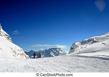 スキー 区域