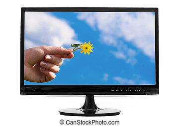 スクリーン, コンピュータ