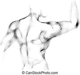 スケッチ, の, 運動, 人, 背中