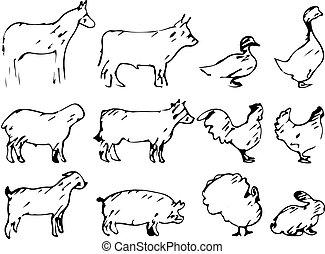 スケッチ, セット, 動物, 農場, ライン, 隔離された, イラスト, 手, ベクトル, 黒い背景, 引かれる, 白