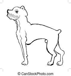 スケッチ, ボクサー犬
