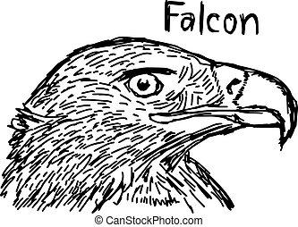スケッチ, ライン, 隔離された, イラスト, 手, ベクトル, 黒, falcon's, 背景, 引かれる, 白, 頭