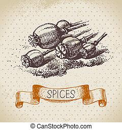 スケッチ, 型, 手, ハーブ, 種, 背景, 引かれる, ケシ, spices., 台所