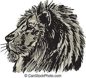 スケッチ, 大きい, イラスト, lion., ベクトル, アフリカの男性