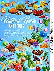 スケッチ, 有機体である, ハーブ, 料理の, 調味料, スパイス